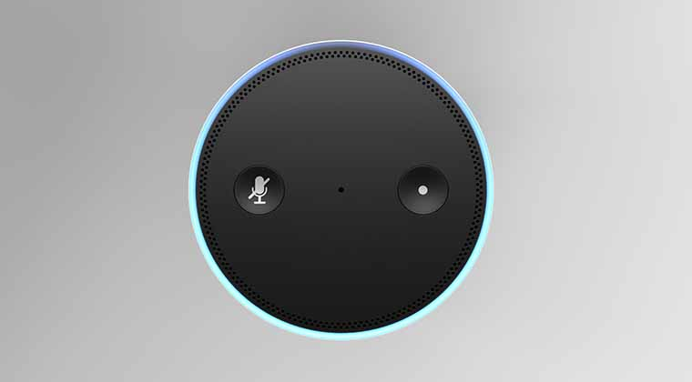 Alexa Voice Assisted Customer Service