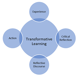 Graphic illustrating the components of transformative training.